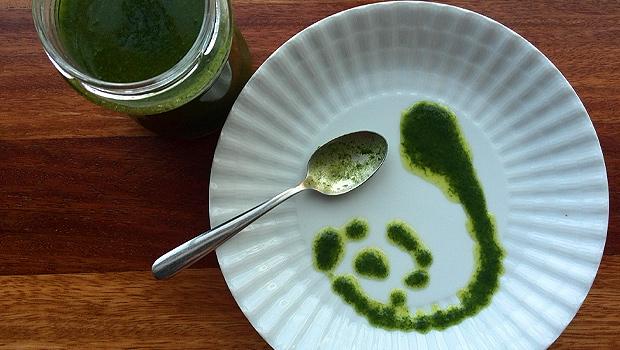 Mollo de coandro – Mojo cilantro